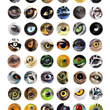 animal eyes clip art digital download collage sheet 1 inch circles graphics images printables for pendants pins magnets