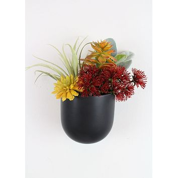 "Small Ceramic Wall Planter in Black - 4"" Tall x 4"" Wide"