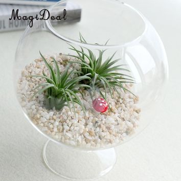 Round Clear Glass Flower Vases Fish Tank Ball Bowl Flower Planter Hydroponic Pot Terrarium with Stand Home Decor Ornament