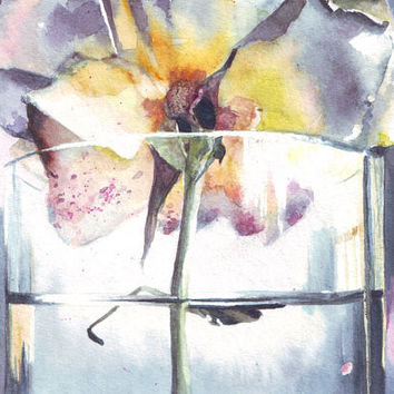 HM043 Original art watercolor painting A Rose by Helga Mcleod