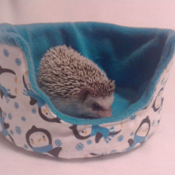 Lily's playful penguin cuddle cup