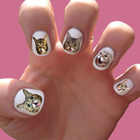 Lil Bub Nail Decals Transfer Nail Stickers by SokayDesigns on Etsy