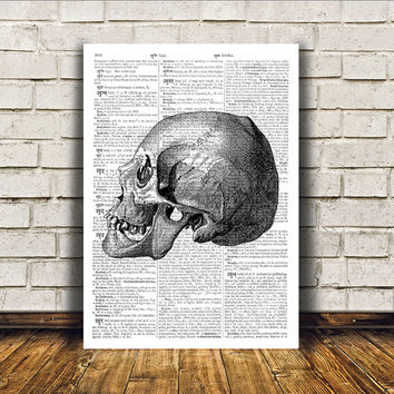 Anatomy art Human skull poster Dictionary print Modern decor RTA326