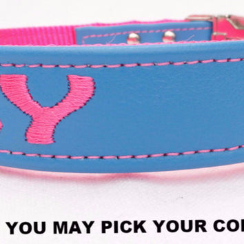 "Dog Collar: Leather w/ Nylon Webbing - 1"" Wide - Personalized - Non-Adjustable (Sizes 12-22) Example 2"
