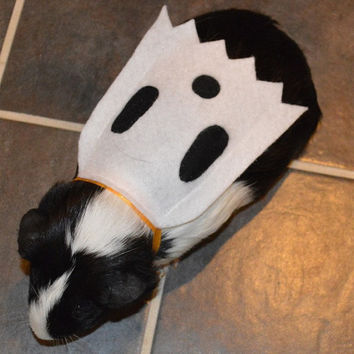 Ghost costume. Guinea pig / pet Halloween costumes by la Marmota Café.