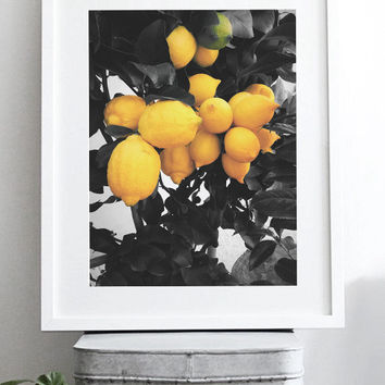 Picture tree. Lemon tree print. Printable lemons. Green leaves poster. Fruits photography. Kitchen print. Artwork nature print