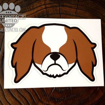 King Charles Spaniel car decal sticker - Cavalier face silhouette vinyl decal - English toy Spaniel gift idea