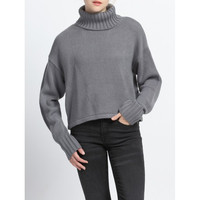 Pure Color Turtle Neck Ribbed Sweater