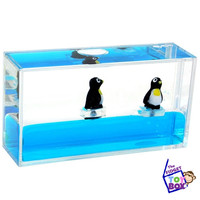 Mini penguin aquarium