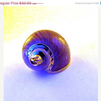 Hello Spring Sale Sea Shell Pendant Gold Trimmed