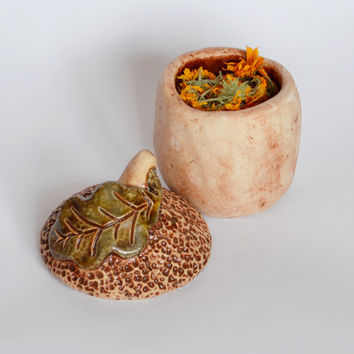 small ceramic box acorn by handmade from clay glazed for storing various small favorite things