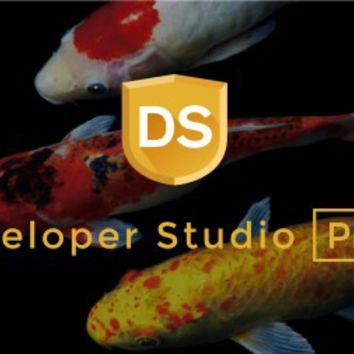 SILKYPIX Developer Studio Pro 7 Full Crack Keygen Download