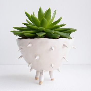 Handmade A White Spiky Cactus Planter Plant Pot