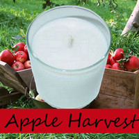 Apple Harvest Scented Candle in Tumbler 13 oz