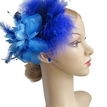 Kathyclassic Womens Fascinators Hat Hair Clip Feather Wedding Headware Bridal 1920s Headpiece