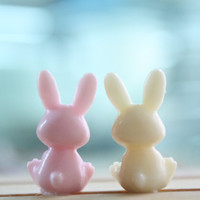 SALE30-70%OFF: Cute Bunny, Rabit 2 color to pick iPhone Plug . Phone Plug . Phone Charm couple, Kawaii, Lovely, Girly, rilakkuma, japanese