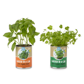 Garden in a Can - Set of 4 | herb growing kit