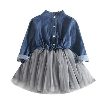 Denim Long Sleeve Tutu Dress