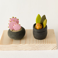 Two Miniature Potted Plant on wood base succulent cactus exotic pink orange green polymer clay home decor clay botany fantasy