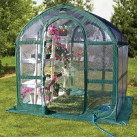 6 x 6 ft. Green & Clear Polyethylene Greenhouse