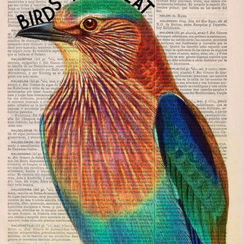 Dictionary print  birds are neat collage-  Vintage Book Print Dictionary or Encyclopedia Page- Upcycled bird art