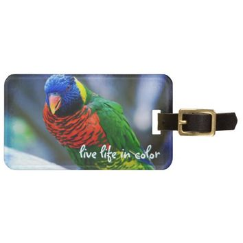 """Live color"" red blue green bird photo luggage tag"
