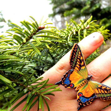 Colourful butterfly ring, Butterfly ring, Colourful wing, Wing ring, Butterfy wing, Butterfly jewelry, Insect, Bug, Not real butterfly