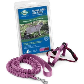 Kitty Harness & Bungee Lead Rose - Medium