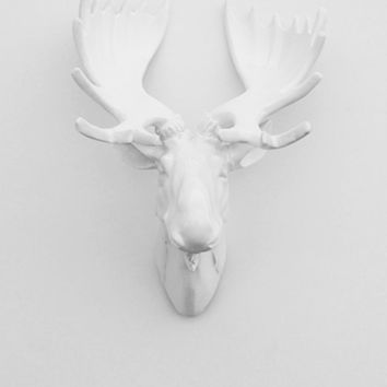 White Moose Head w/White Antlers - The Royale - Faux Taxidermy - Chic & Trendy
