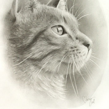 Original drawing of a cat portrait, on the best quality paper, can be framed or gifted as a greeting card