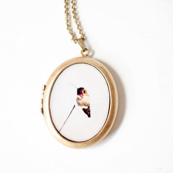 Hummmigbird Photo Locket Necklace, Bird Locket, Large Oval Locket, Nature, Bird Lover,