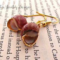 Real shell and gold earrings. Reddish shell dipped in gold.