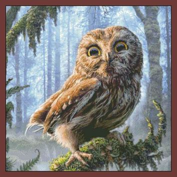 Needlework,DIY DMC 14CT Unprinted Cross stitch,Sets For Embroidery kits,Jungle Owl Counted Cross-Stitching,Wall Home Animal