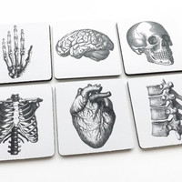 Anatomy Coasters human body skeleton skull brain anatomical heart doctor nurse student medical gift
