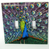 Double Switch Cover  - Light Switch Plate Peacock