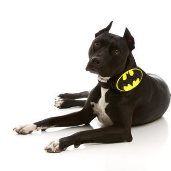 Bat Dog Quickie Costume Collar Attachment:  Black and Yellow Halloween Costume (Gift for Marvel, Batman, Comic Book Lover)