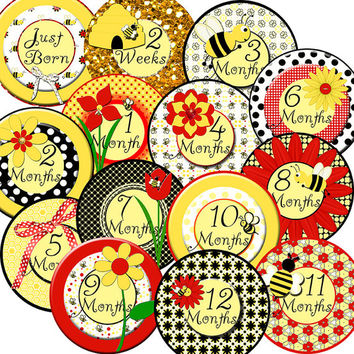 14 Bumble Bee Flowers Black Yellow Red Baby Girl Monthly Milestone Onesuit Stickers Newborn Shower Gift