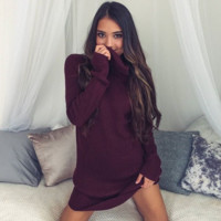 Burgundy High Neck Rib  Sweater Dress B0013919