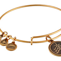 Alex and Ani SEVEN SWARDS Love Radiance Strength Rafaelian-Gold Bangle Bracelet New