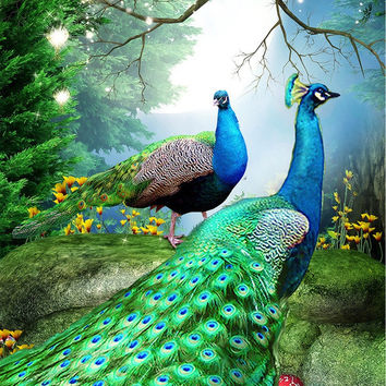 New 5D DIY Full diamond embroidery peacock Diamant Mosaic Needlework cross stitch Diy diamond Painting Hand home decor