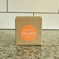 Grow your own Sunflower Kit with concrete planter, concrete planter, plant kit, plant your own, diy