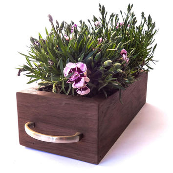 Planter Box, South American Black Walnut
