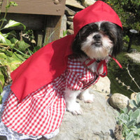 Little Red Riding Hood inspired Dog Dress/Costume Size Large