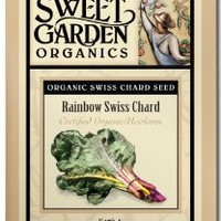 Rainbow Swiss Chard - Heirloom Seeds