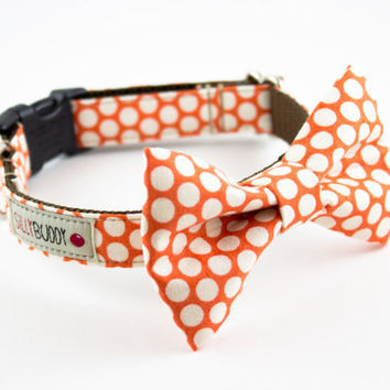 Tangerine Honeycomb Dog Bow Tie Collar by SillyBuddy on Etsy