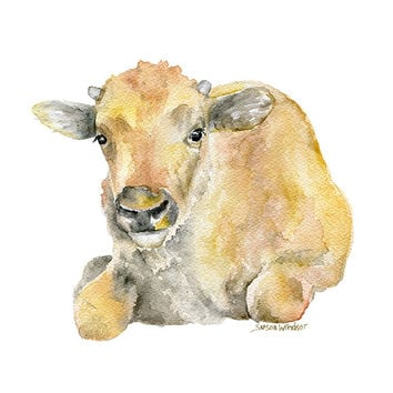 Buffalo Calf Watercolor