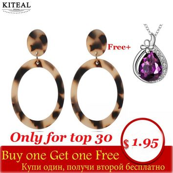 2018 Vintage Acid Acrylic Tortoiseshell round circle Earring for Women Leopard geometric Moon Large hoop Earrings
