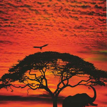 African Elephant and Tree at Sunset Poster 24x36