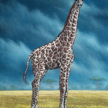 ON SALE Giraffe black velvet oil painting handpainted signed art