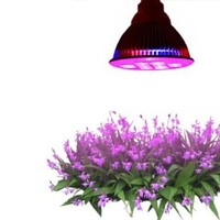 Highest Efficient Hydroponic LED Grow Light, TaoTronics E27 Plant Grow Lights (12w 3 Bands)